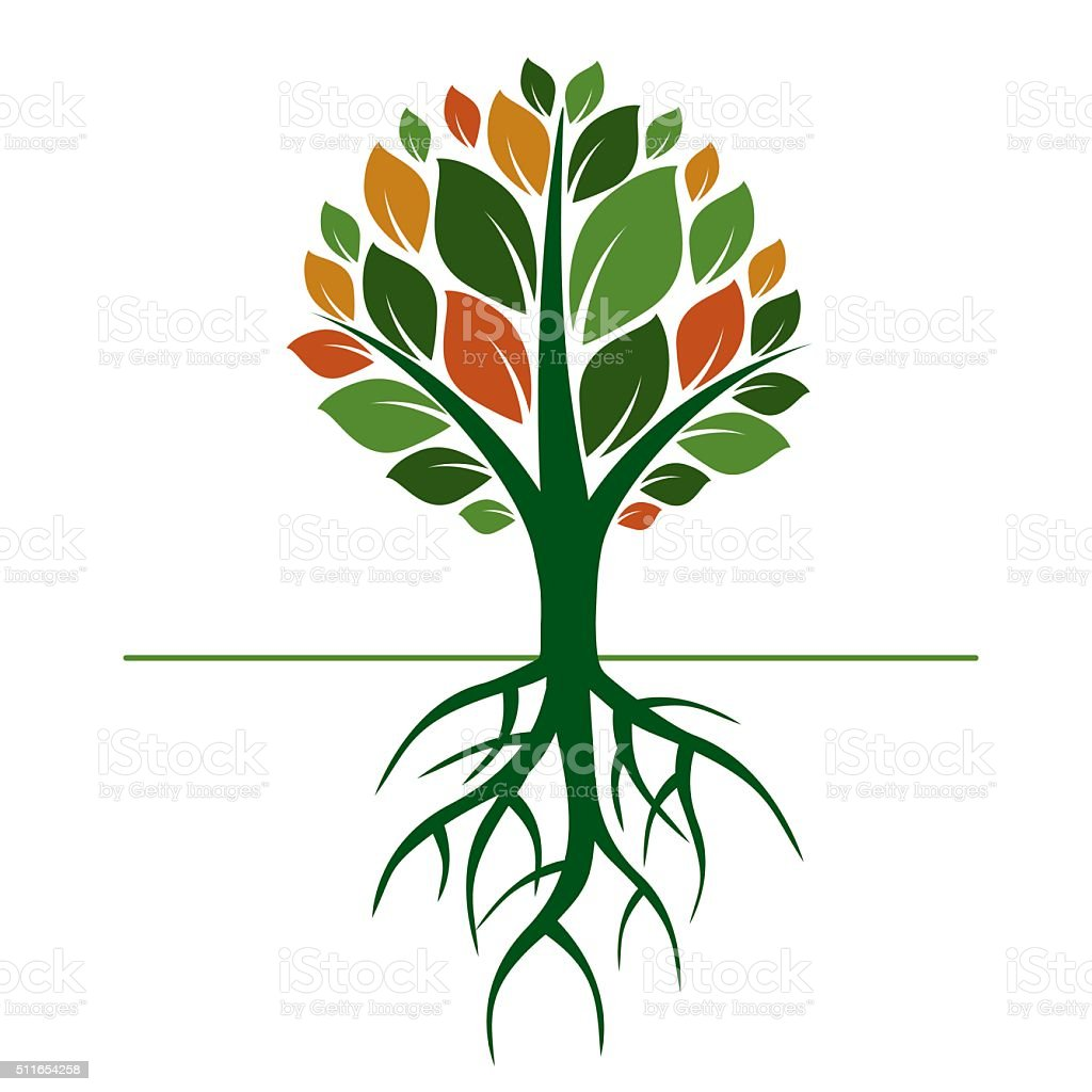 Color Tree And Roots Vector Illustration Stock Vector Art & More ...