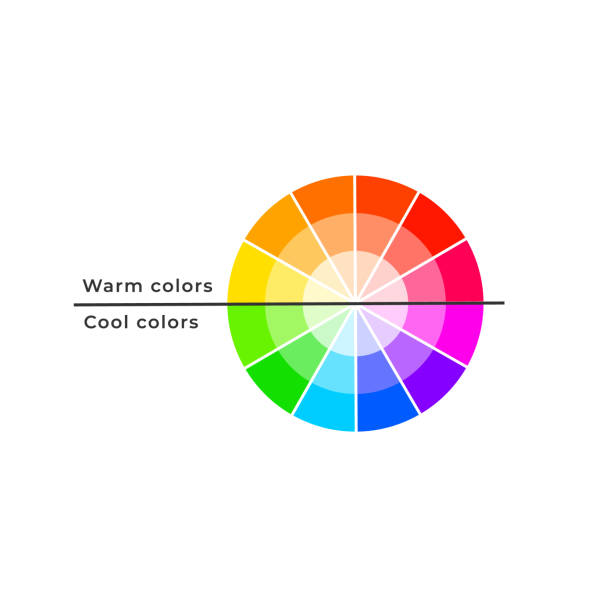 illustrazioni stock, clip art, cartoni animati e icone di tendenza di color wheel divided by warm and cool colour temperature properties. - ruota dei colori