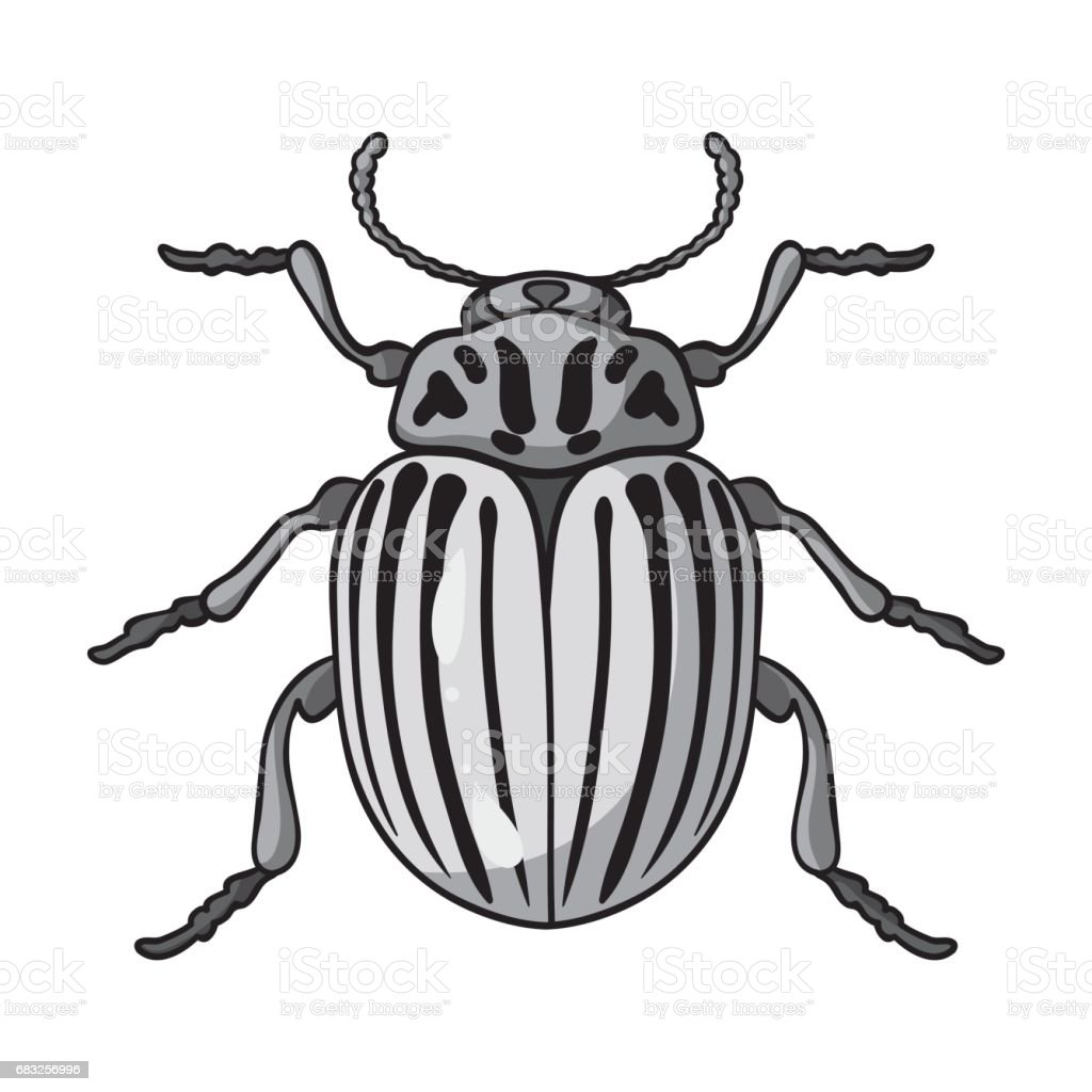 Colorado beetle icon in monochrome style isolated on white background. Insects symbol stock vector illustration. colorado beetle icon in monochrome style isolated on white background insects symbol stock vector illustration - arte vetorial de stock e mais imagens de agricultura royalty-free