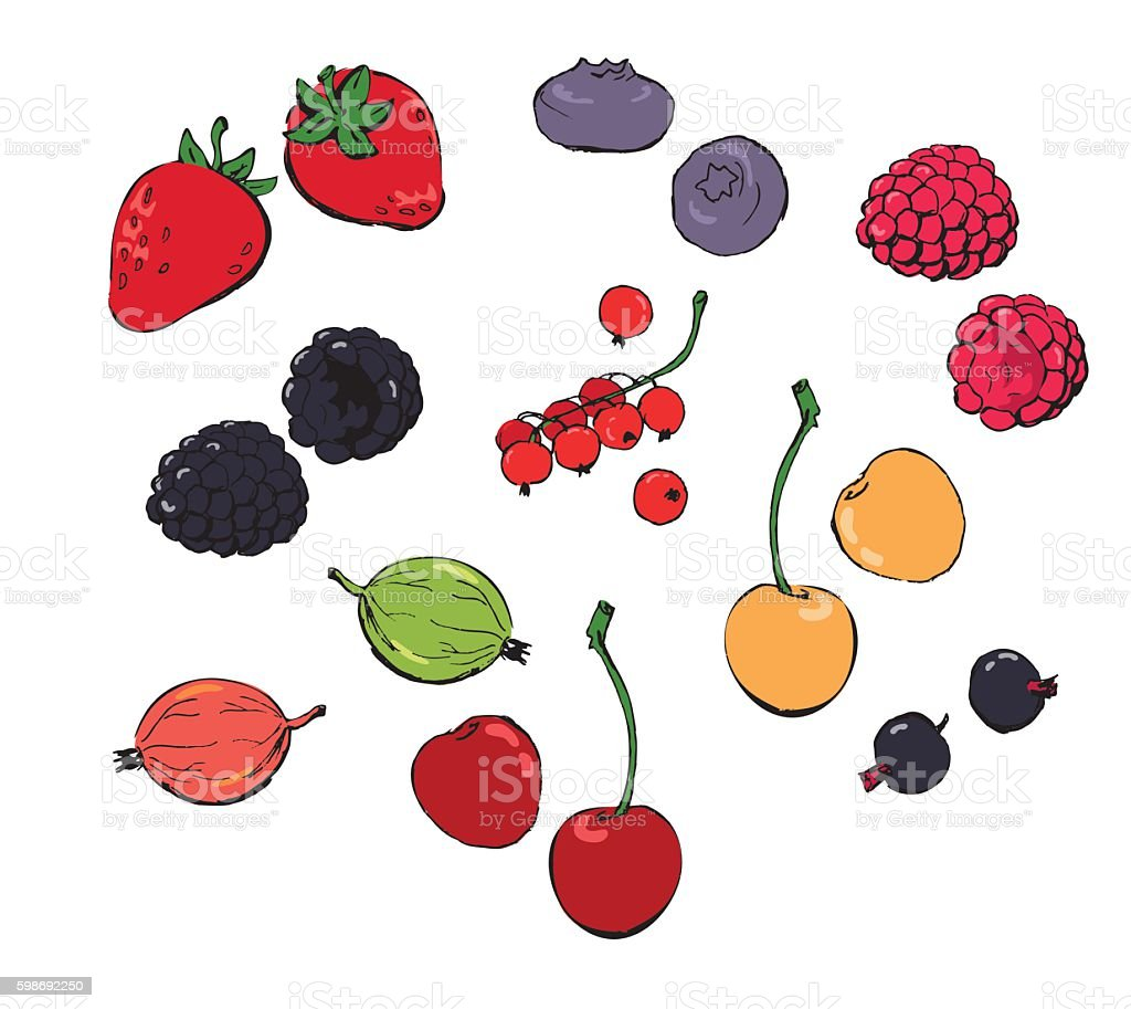 Colored berries doodles set vector art illustration