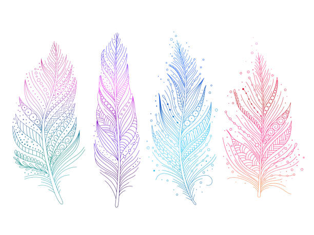 illustrazioni stock, clip art, cartoni animati e icone di tendenza di colored bird feathers - piume colorate