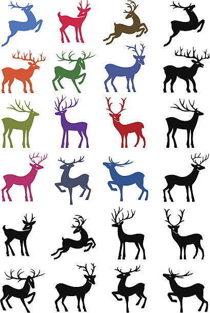colored & black outlined deer vector silhouettes - wildlife calendar stock illustrations, clip art, cartoons, & icons