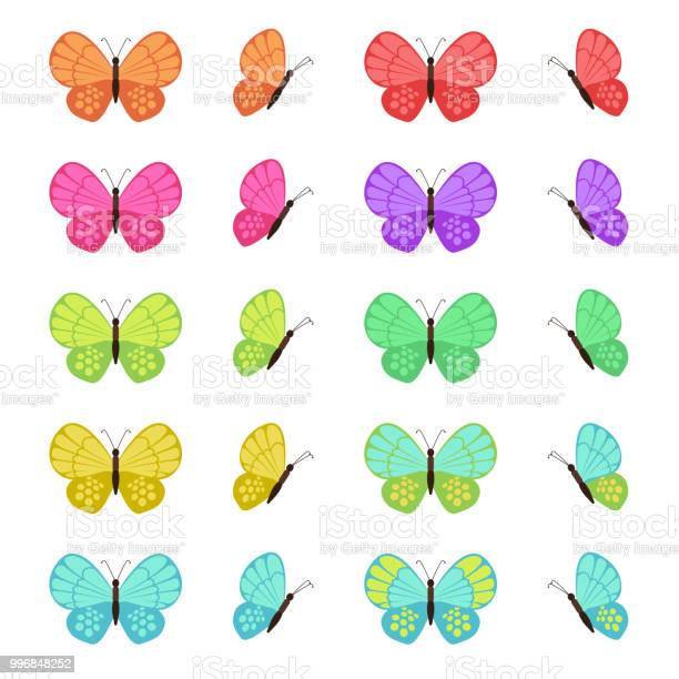 Colored butterflies isolated on white background flat vector set vector id996848252?b=1&k=6&m=996848252&s=612x612&h=nnrxgo27tcyrwo7rsqiaccrknfeskvudnotqewocrka=