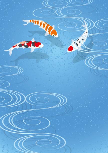 colored carp.Nishikigoi. vector art illustration