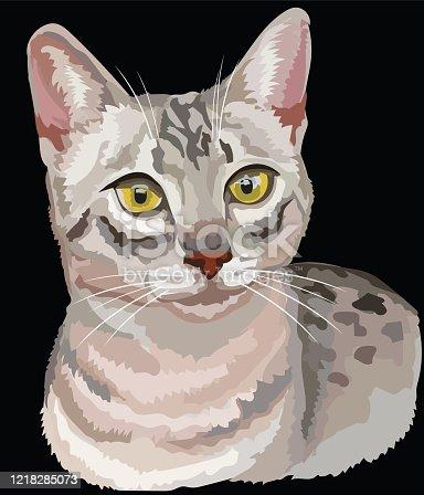istock Colored Egyptian Mau Cat 1218285073