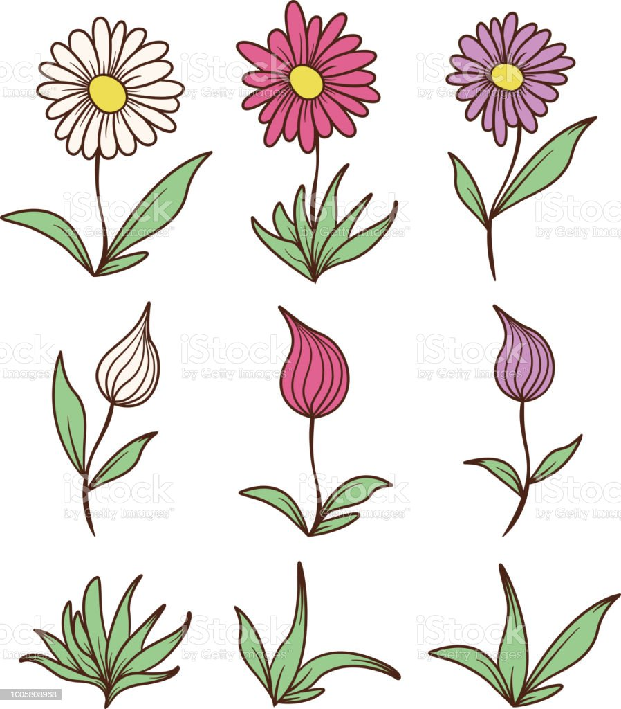 Colored Flowers and Leaves vector art illustration