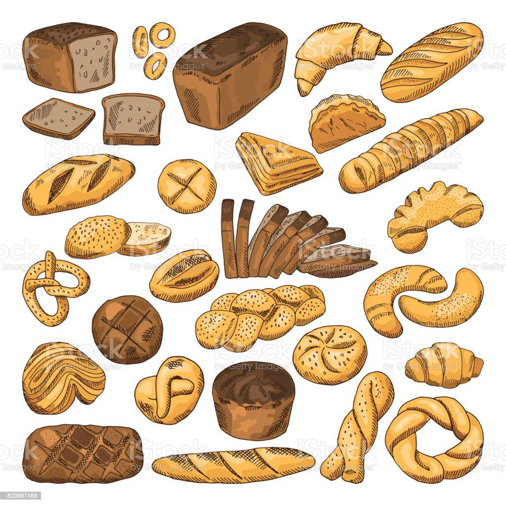 Couleur main dessinée images de pain frais et des différents types d'aliments de boulangerie. Baguette, croissant et autres - Illustration vectorielle