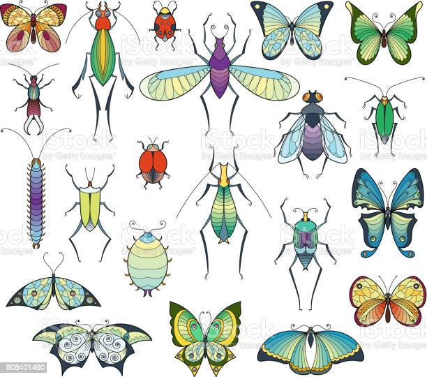 Colored insects isolate on white bugs and butterflies vector pictures vector id808401460?b=1&k=6&m=808401460&s=612x612&h=mlv3cuv79rexziazxhr7skufxckyyuco2wdayl9xce4=