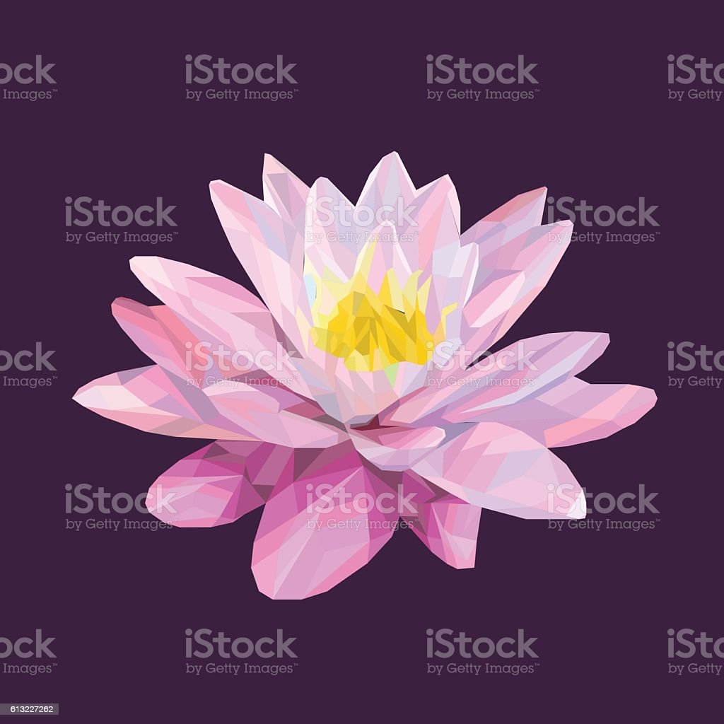 Colored lotus flower low poly style stock vector art more images colored lotus flower low poly style royalty free colored lotus flower low poly style mightylinksfo