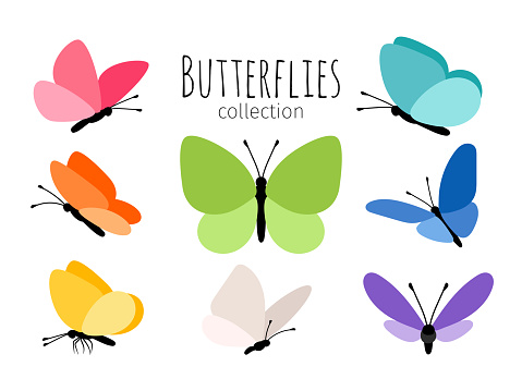 Colored spring butterflies clipart