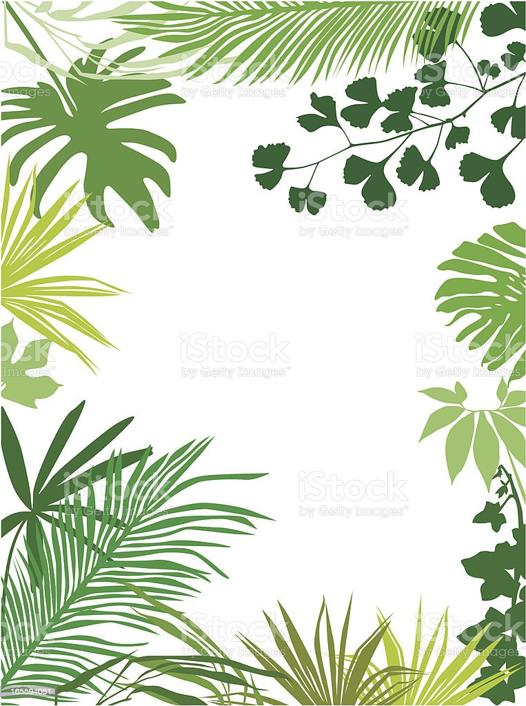 Colored tropical leaves frame royalty-free colored tropical leaves frame stock vector art & more images of backgrounds