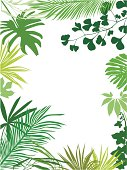 Colored tropical leaves frame