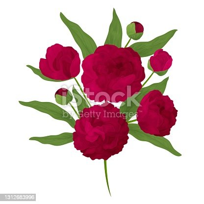 istock Colorful and realistic peony branch. Red flowers and buds. 1312683996