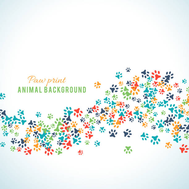 colorful animal footprint ornament border isolated on white background - animals background stock illustrations