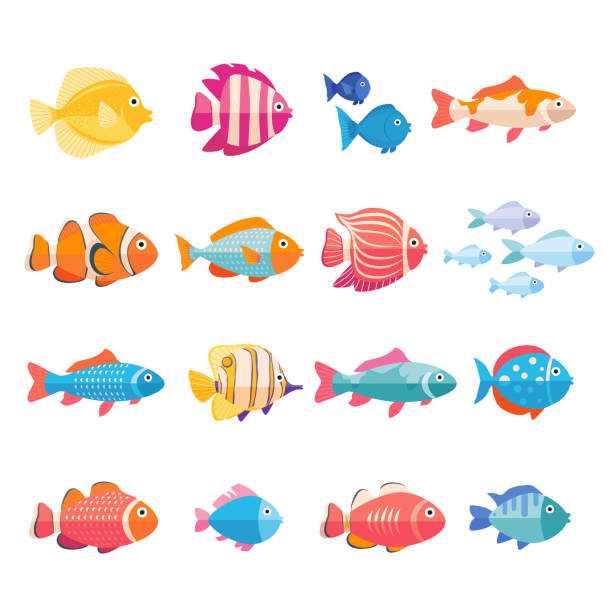 ilustrações de stock, clip art, desenhos animados e ícones de colorful aquarium fish set vector isolated. tropical fishes collection - peixe