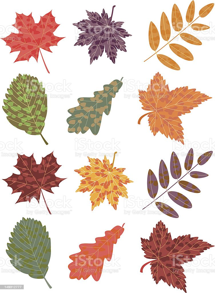 colorful autumn leaves royalty-free colorful autumn leaves stock vector art & more images of acacia tree