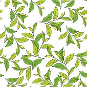 Colorful background with leaves.
