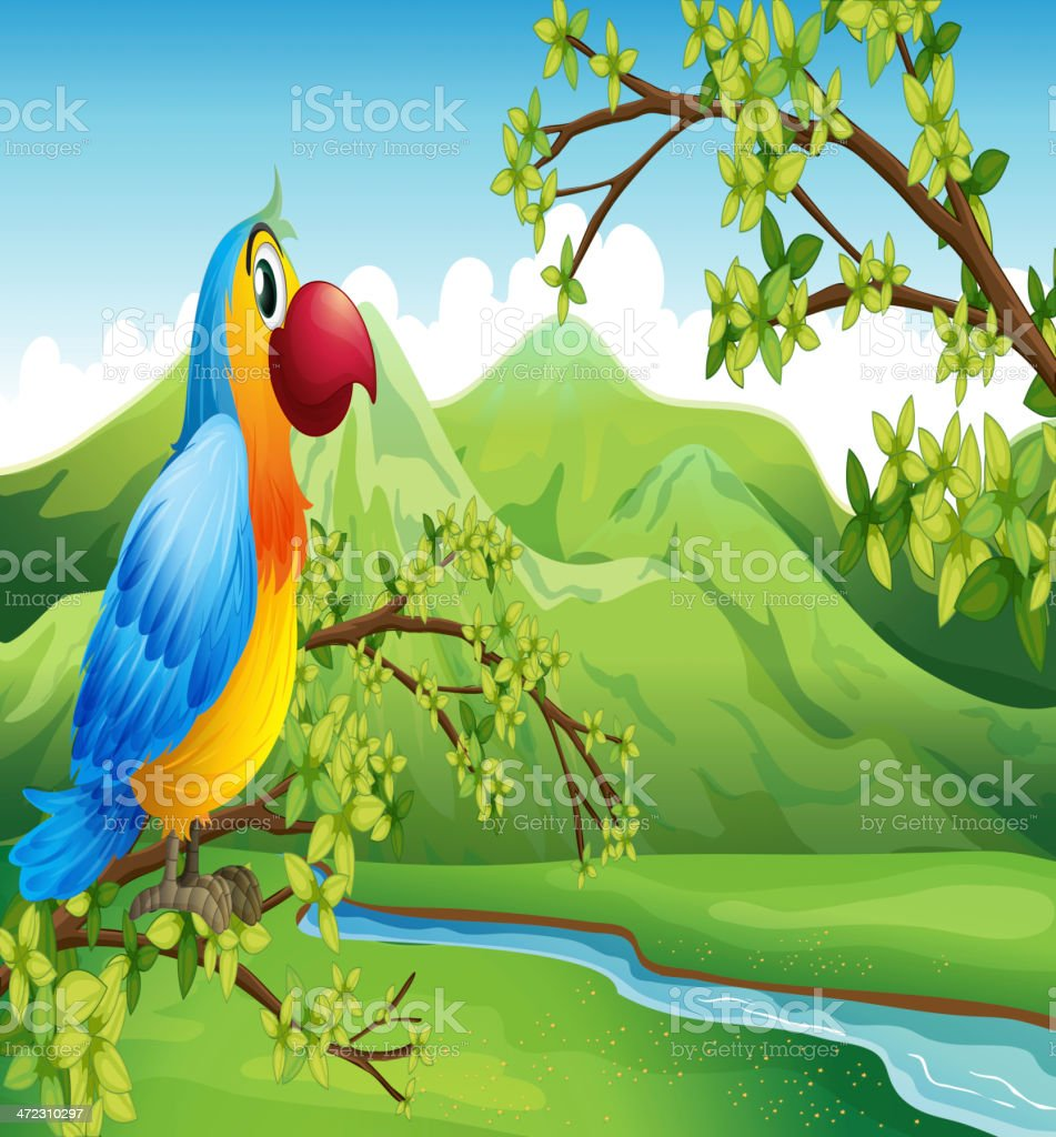 Colorful bird near the mountain royalty-free colorful bird near the mountain stock vector art & more images of animal