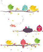 Colorful birds sitting on branches
