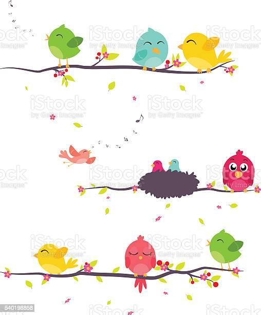 Colorful birds sitting on branches vector id540198858?b=1&k=6&m=540198858&s=612x612&h=orstfz uei8maxhbqdmvff34jsa2awnxjvki6uwrjoa=