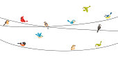 Vector Illustration of Colorful birds sitting on wire isolated on white\n\neps10