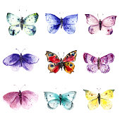 Hand drawn watercolor illustration. Colorful butterflies and moths set for decoration, packaging design, sticker set.