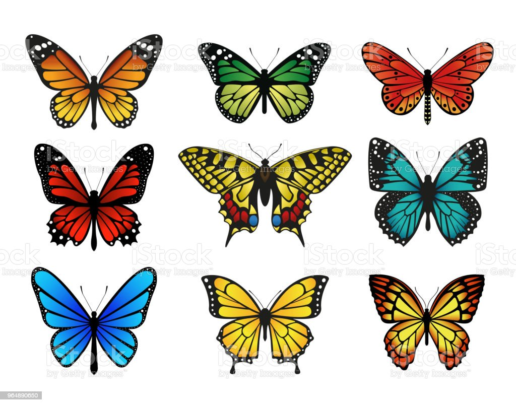 Colorful butterflies set. Vector illustration royalty-free colorful butterflies set vector illustration stock vector art & more images of animal