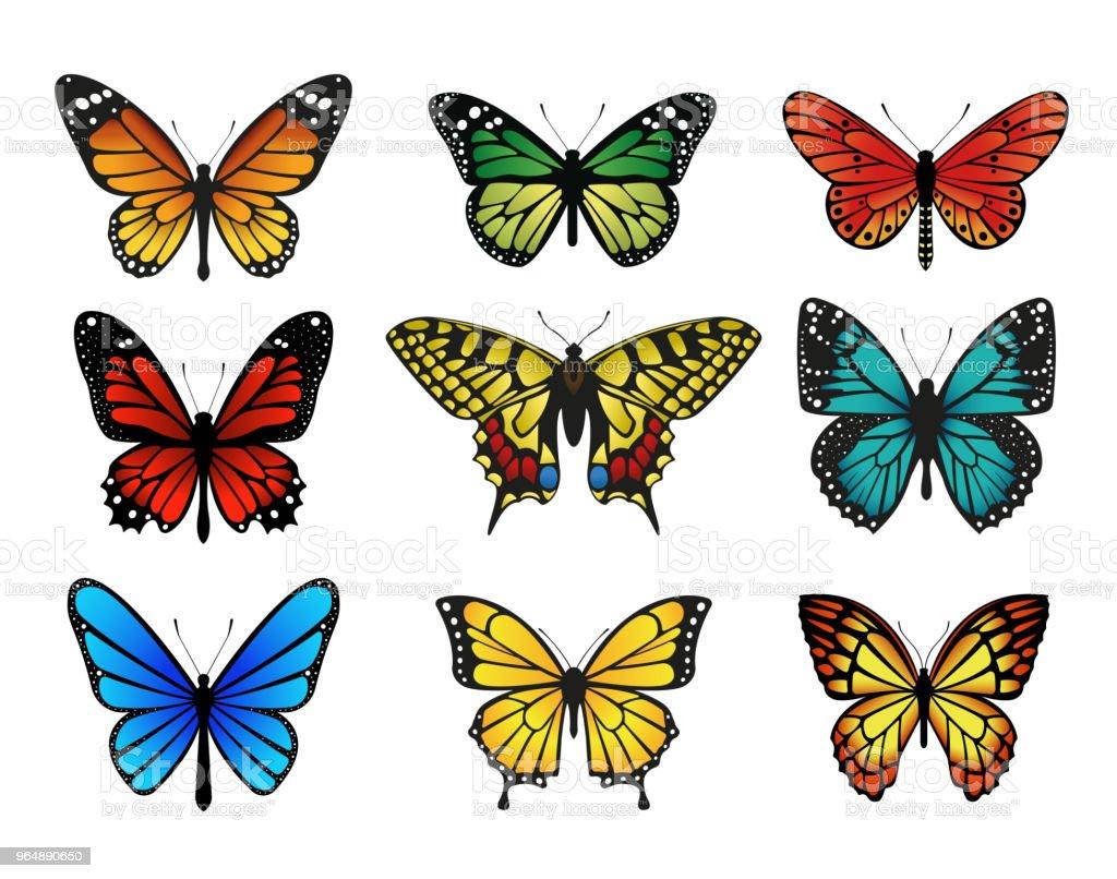 五顏六色的蝴蝶集合。向量插圖 - 免版稅一組物體圖庫向量圖形