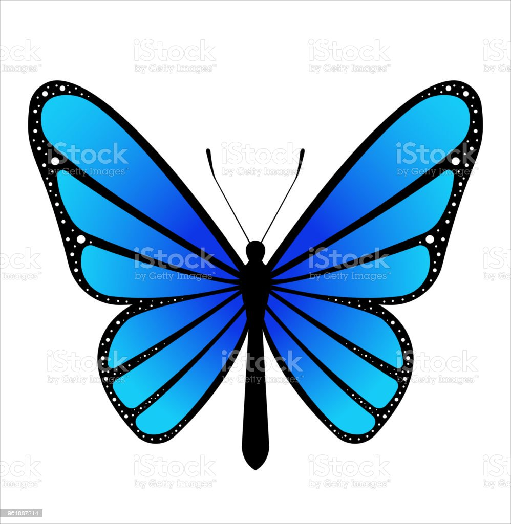 Colorful butterfly . Vector illustration royalty-free colorful butterfly vector illustration stock vector art & more images of animal