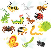 Colorful cartoon illustration of different insects