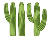 Colorful cartoon mexican cactus set. Wild succulent plant. Mexico theme vector illustration for icon, stamp, label, badge, certificate, leaflet, brochure or banner decoration
