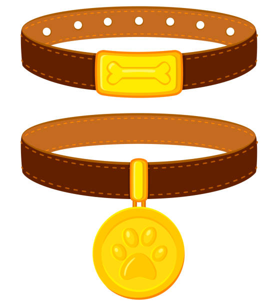 Colorful cartoon pet collar set Colorful cartoon pet collar set. Simple supplies for domestic animal. Cat and dog care themed vector illustration for icon, sticker, patch, label, badge, certificate or gift card decoration collar stock illustrations