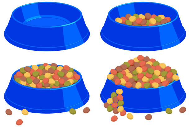 royalty free dog eating from bowl clip art vector images