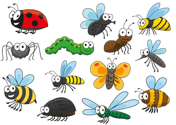 Colorful cartoon smiling insects characters Friendly smiling cartoon bee and bug, butterfly and caterpillar, fly and ladybug, spider and mosquito, wasp and ant, bumblebee, dragonfly and hornet characters. Colorful funny insects for t-shirt print, mascot, childish book or nature themes design  fly insect stock illustrations