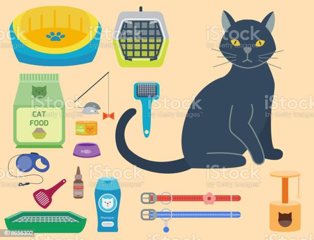 Colorful cat accessory cute vector animal icons pet equipment food vector id678656302?b=1&k=6&m=678656302&s=612x612&h=sa3 kis0ctgx8wuqivqi4owdkhn7zr1hpzvrvvbasvo=