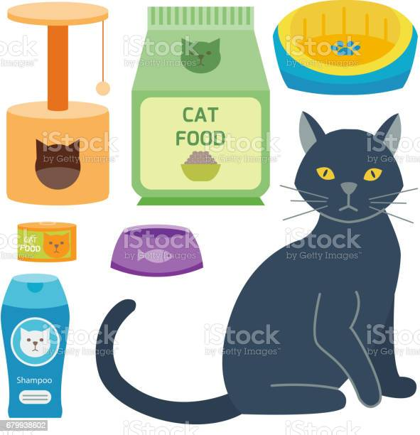 Colorful cat accessory cute vector animal icons pet equipment food vector id679938602?b=1&k=6&m=679938602&s=612x612&h=zcgbfdzpyis6ks88ig34pvk 72zzusqdupptuekdlos=