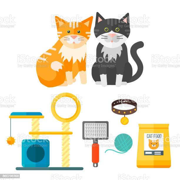 Colorful cat accessory cute vector animal icons pet equipment food vector id860298368?b=1&k=6&m=860298368&s=612x612&h=6w1vprcbkhyhxs omse69s4r9htxfx7ty 9rksmun2o=