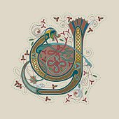 "Colorful illumination of a celtic initial letter Y with gold on beige/chamois background. This ornamental and playful letter is based on a dragon with two tails, flowers, tendrils and endless knots (celtic knots). The shape of the letters refers to the unziale (medieval type form). Similar illustrations are known from the various illuminations in medieval, celtic books such as the ""book of kells"" and the ""Lindisfarne gospels""."