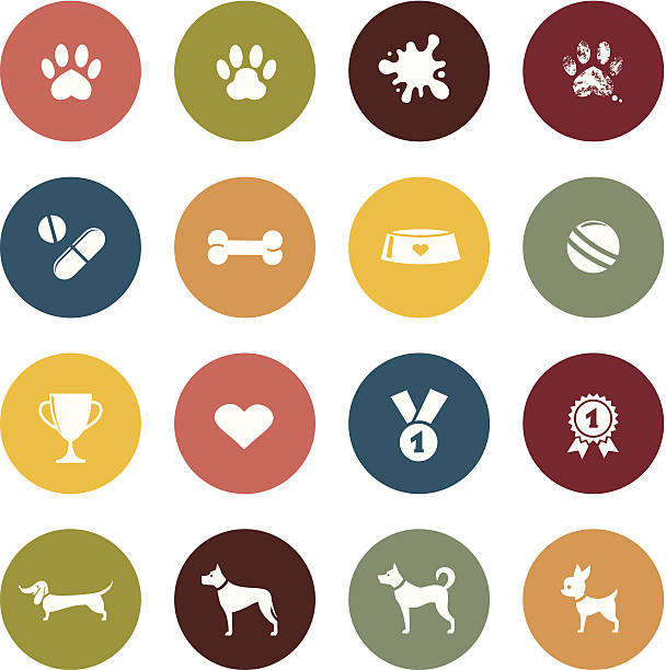 stockillustraties, clipart, cartoons en iconen met colorful collage of dogs and dog toys - verwend huisdier