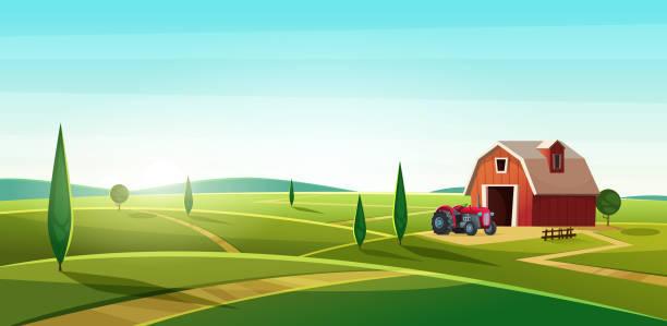 헛간과 언덕에 트랙터와 함께 다채로운 시골 풍경. 시골 위치입니다. 만화 현대 벡터 일러스트 레이 션 - 농장 stock illustrations