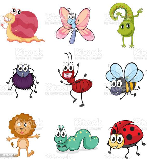 Colorful creatures vector id477935331?b=1&k=6&m=477935331&s=612x612&h=ebr6mgs6jlorm7stau6w fput2tazvhuxurb3ji40mu=