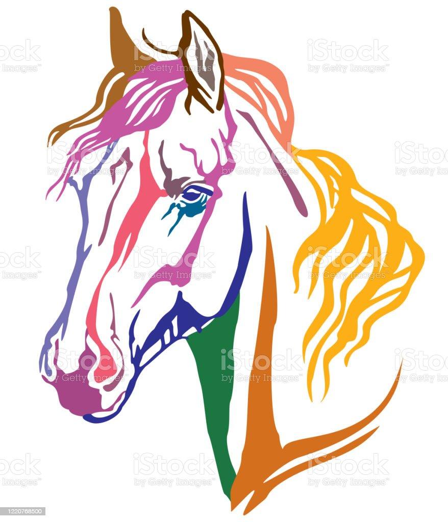 Colorful Decorative Portrait Of Arabian Horse Vector Illustration Stock Illustration Download Image Now Istock