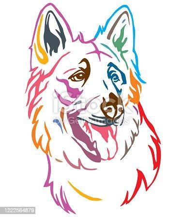 istock Colorful decorative portrait of Dog Berger Blanc Suisse vector illustration 1222564879