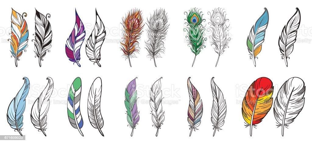 カラフルな鳥の羽 ふわふわのベクターアート素材や画像を多数ご用意