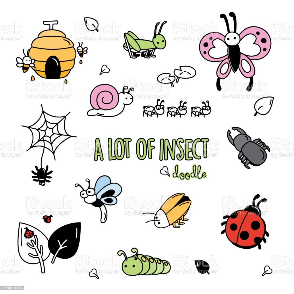 Colorful doodles of insects.