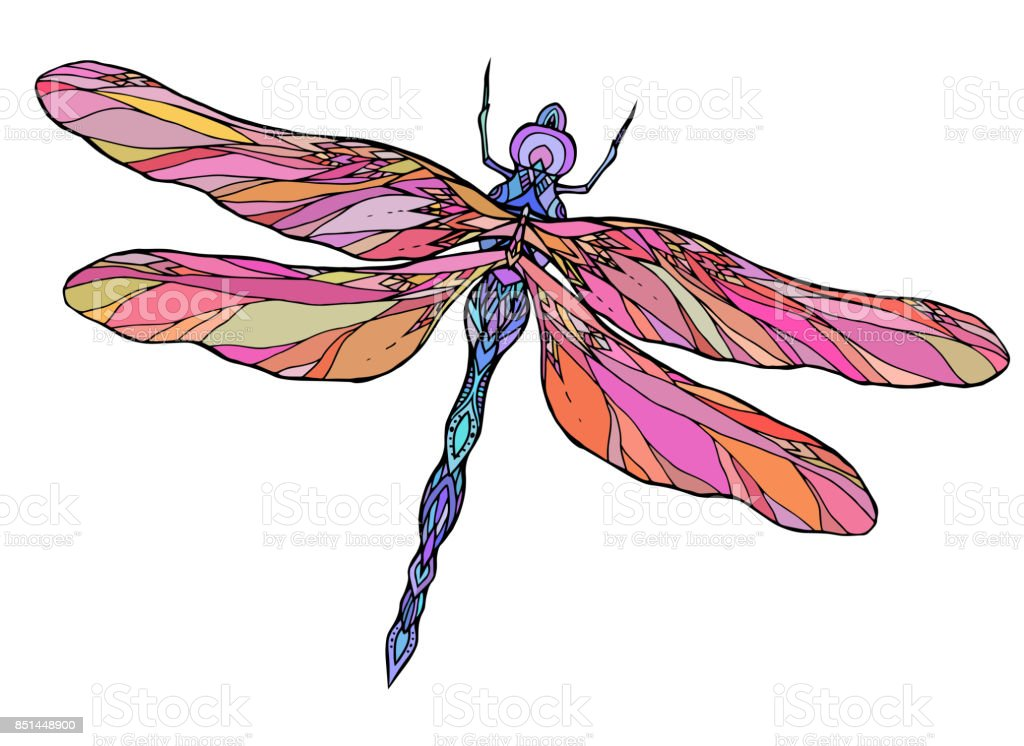 Colorful Dragonfly Illustration With Boho Pattern Stock ...