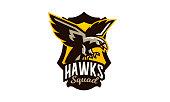 Colorful emblem, badge, icon of flying eagle. Bird, hunter, predator, dangerous animal, shield, lettering. Mascot sports club, vector illustration.