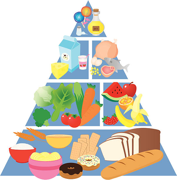 Colorful food pyramid with images of each food group vector art illustration