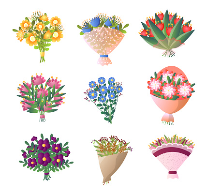 Colorful fresh flowers bouquet set isolated on white