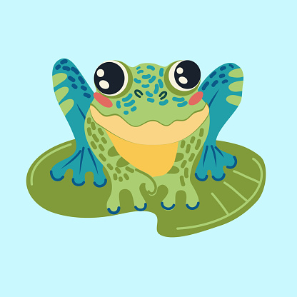 Colorful frog hand drawn flat vector illustration. Cute cartoon character. Funny animals . T shirt print design in doodle style. Poster for children's room